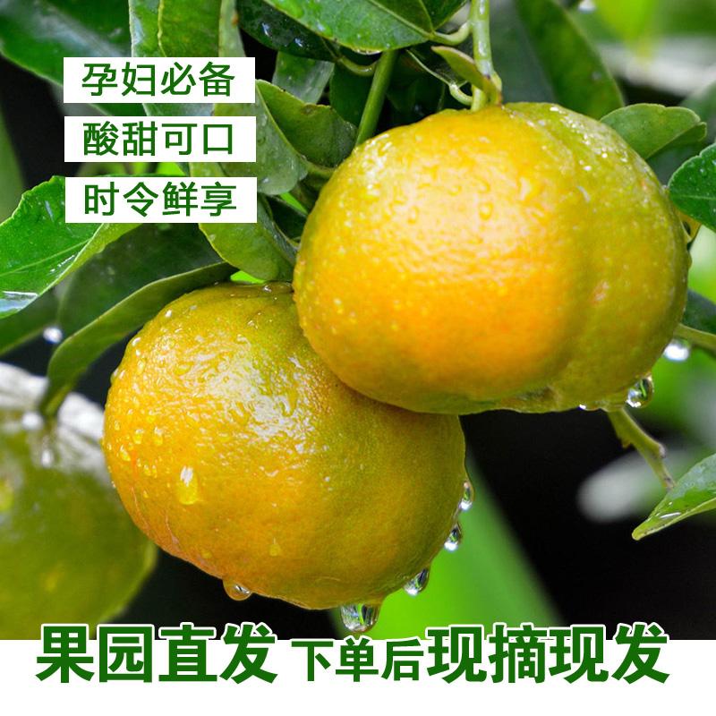 惠妻 贵州 青皮密桔 5斤 15.9元包邮