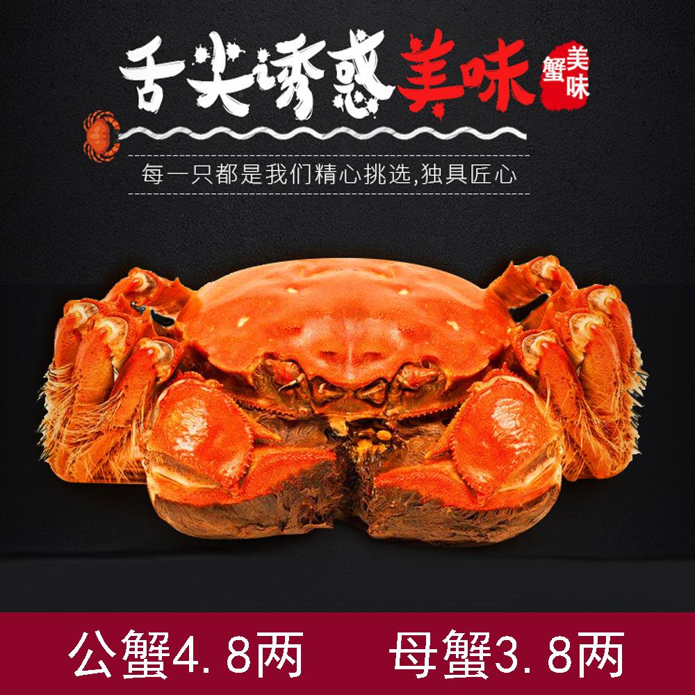 鲜活大螃蟹公4.8两母3.8两共10只装 券后98元包邮