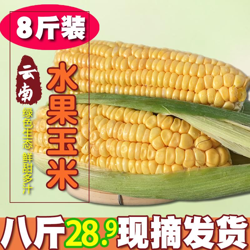 新鲜云南水果玉米8斤 券后18.9元包邮
