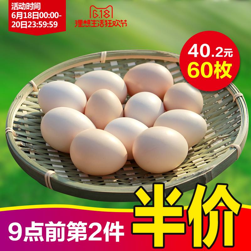 天农农家散养土鸡初生蛋(30枚)第二件9.9元,拍2件60枚,后33.7元包邮