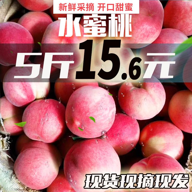 特级新鲜水蜜桃5斤装 券后15.9元包邮