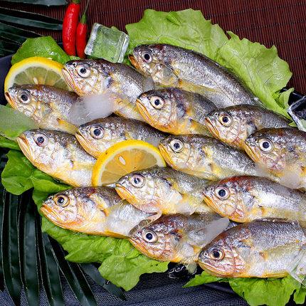 星渔海捕野生小黄花鱼3斤 37.9元包邮(需拍3件)