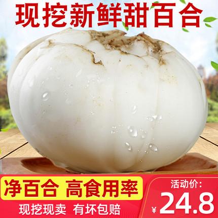 陇卉旗舰店-兰州鲜甜百合2袋500g