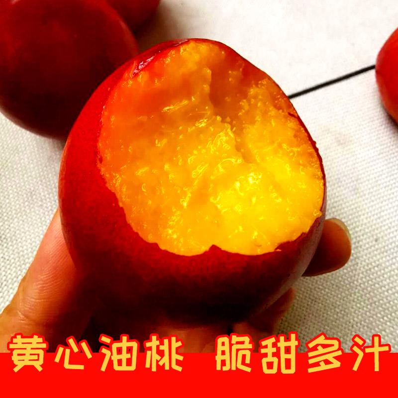 【果唯岛】现摘黄心油桃5斤 满减+券后15.8元包邮