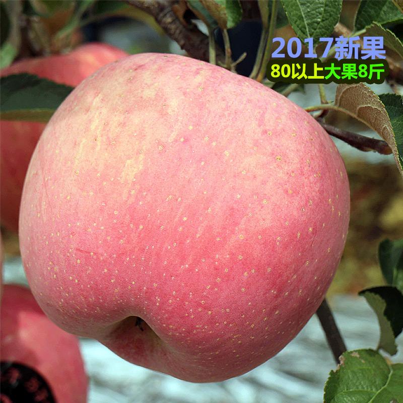 山东烟台红富士大苹果8斤,券后26.8元包邮