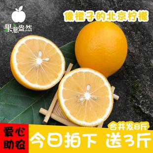 柠檬新鲜当季现摘重庆万州黄柠檬买五斤送三斤共八斤 北京柠檬